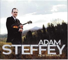 """Adam Steffey's """"New Primitive"""""""