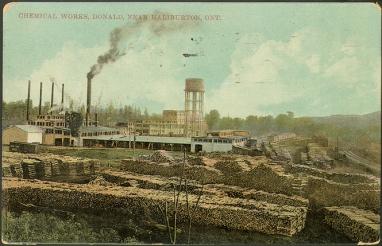 Toronto-Public-Library-Postcard-pcr-6631
