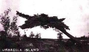 umbrella island