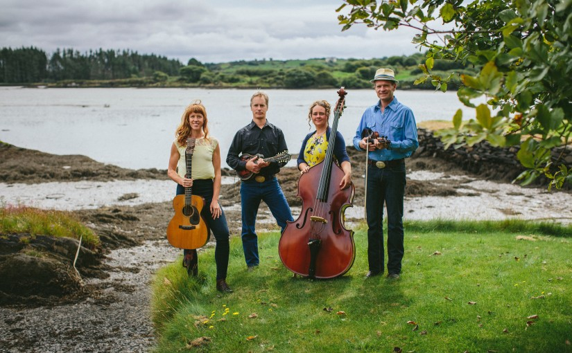 Checking in with the Foghorn Stringband